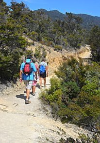 Walking the Able Tasman track above Anchorage