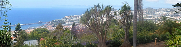 Funchal from the Botanic gardens