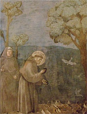 The sermon to the birds by Giotto