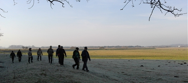 Walking across Pulborough Moor