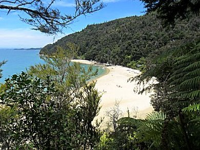 Stillwell Bay on the Abel Tasman Track